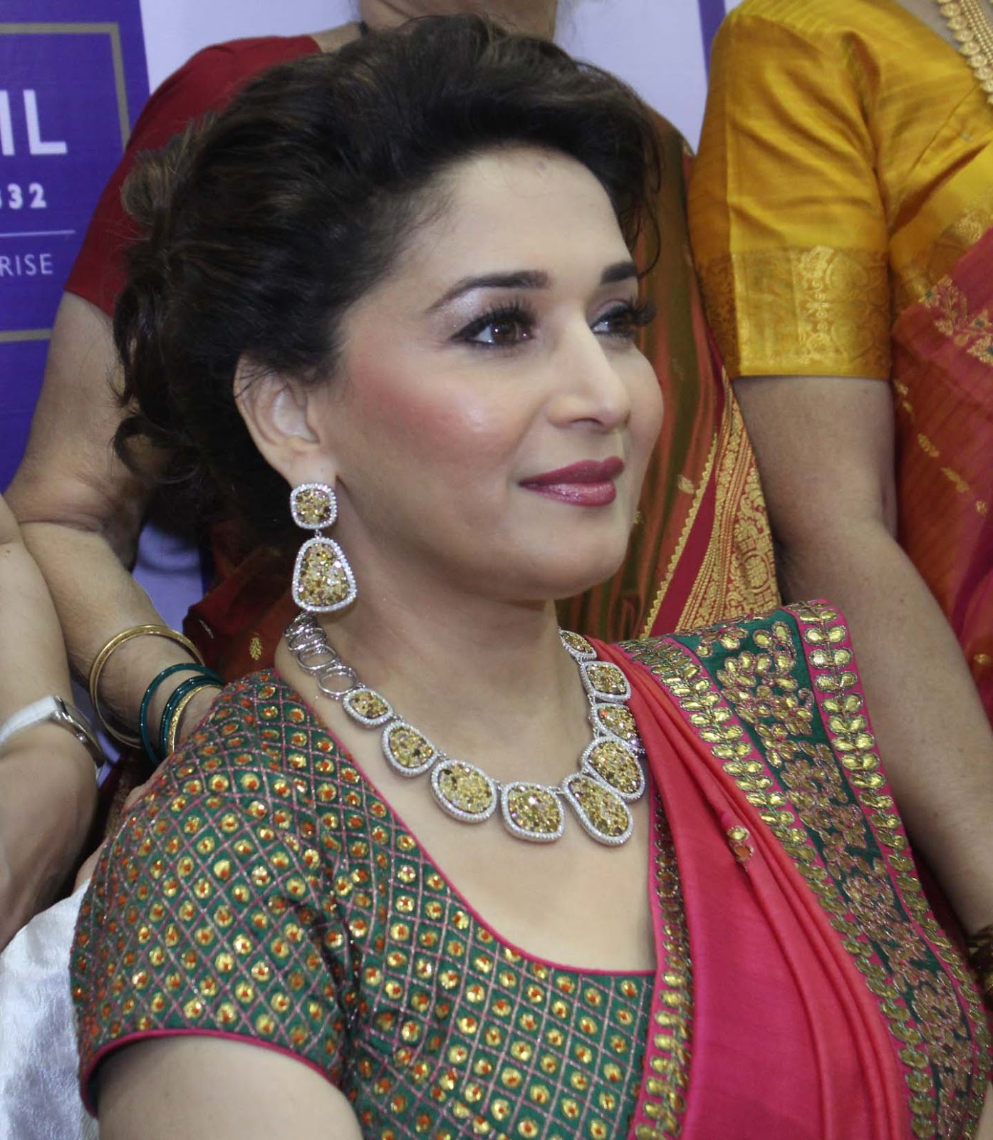 Madhuri Dixit High Definition Photos In Saree - Trionic 88 -4087