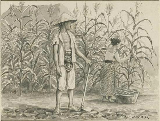 Lukisan Petani
