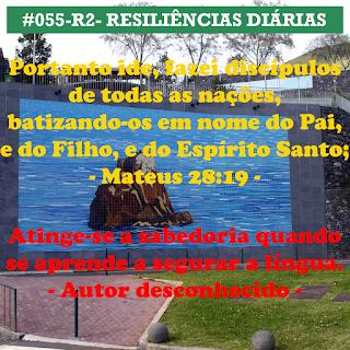 055-R2- RESILIÊNCIA 2