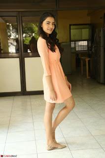 Rukshar Mir in a Peachy Deep Neck Short Dress 120.JPG