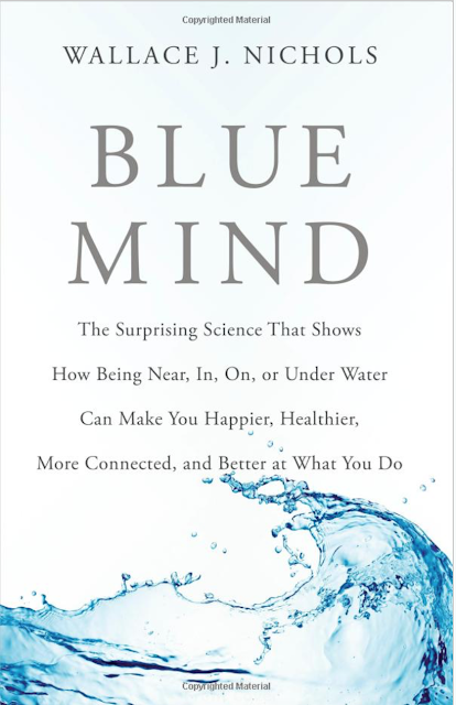 favorite books for people who love the ocean, BLUE MIND