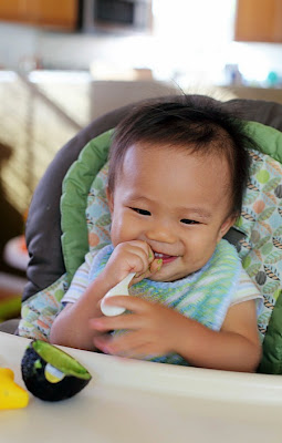 manfaat buah alpukat untuk bayi