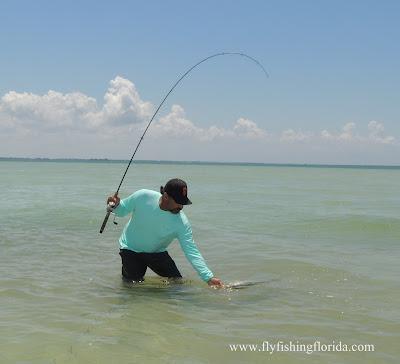 Art Korp Snook fishing near Clearwater FL.