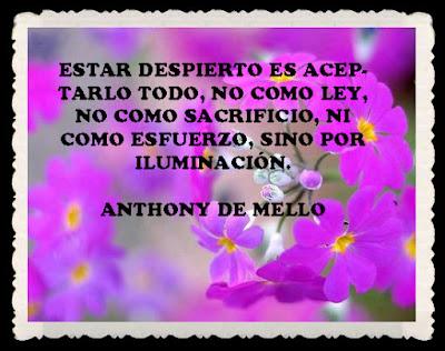 Resultado de imagen para ¿Cuál es el problema de los libros de Anthony de Mello?