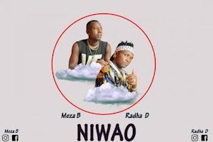 Download Audio | Meza B ft Radha D - Niwao