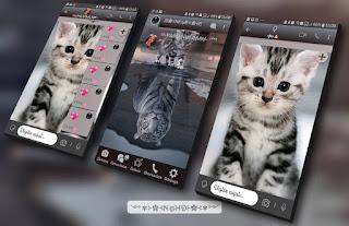 Cat & Tiger Theme For YOWhatsApp & Fouad WhatsApp By NANDA