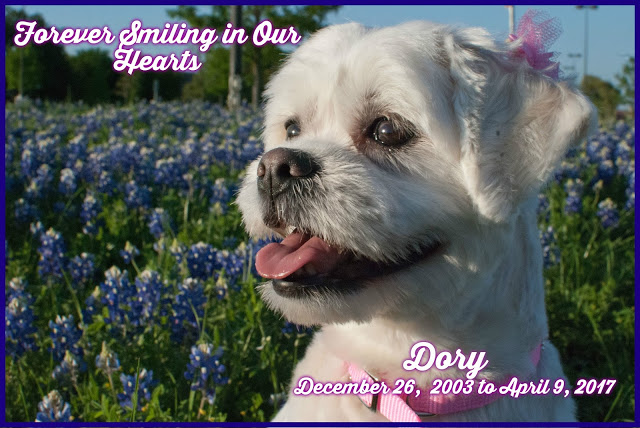 Dory - Forever in our Hearts