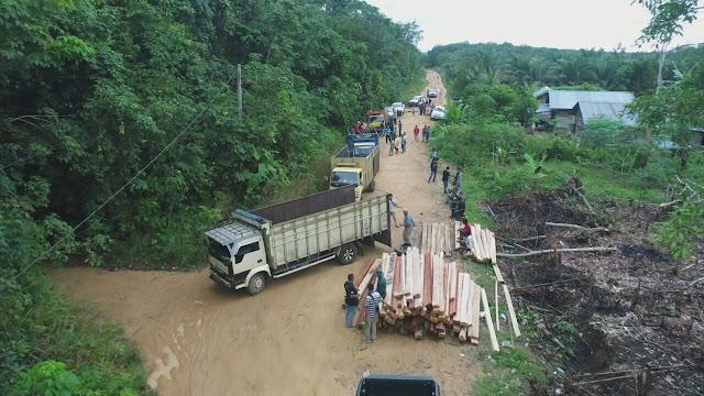 Ilegal Logging di Depan Mata Petugas