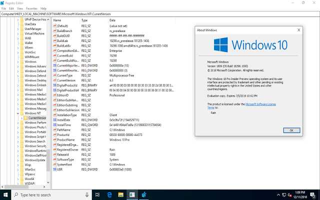 Windows 10 19h1 [18298.1000.181205-1436] Extend Version En-us (x86x64) Aio [32in2] - Team Os