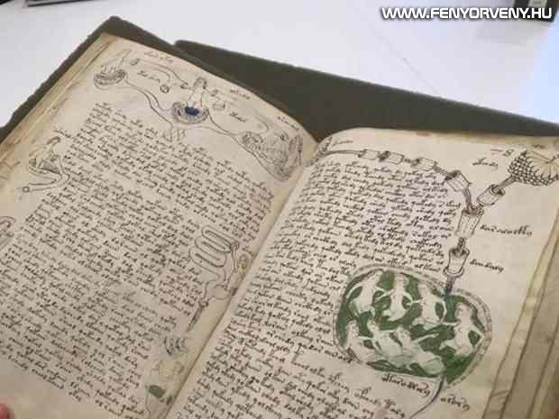 voynich kezirat 01 - A középkor legtitokzatosabb irománya, a Voynich-kézirat