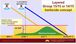 layer-residual-herbicides-concept