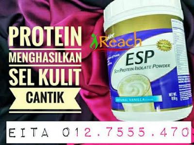 protein soya shaklee