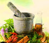 Types of Medicinal Herbs and Their Benefits For Human Health