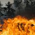 Incendi, il territorio casertano continua a bruciare: l'emergenza è un business