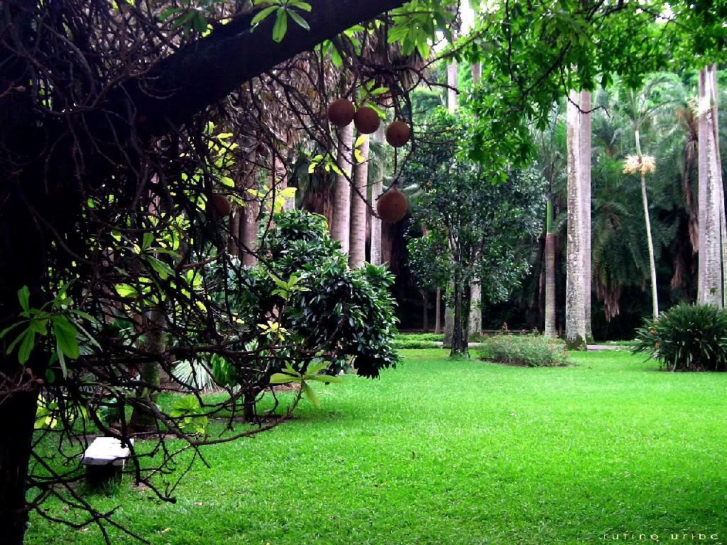 Wallpaper paisajes naturales del mundo culturas - Paisajes y jardines ...