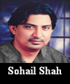 http://www.humaliwalayazadar.com/2016/09/sohail-shah-soz-salam-marsia.html