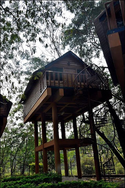 Tree house at Bhavani Island