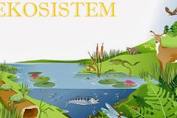 Pengertian Ekosistem Beserta Komponen, Tipe, Macam Jenis dan Contoh Ekosistem