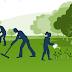 Innovative Farmer Webinar : Using compost to build and maintain soil health