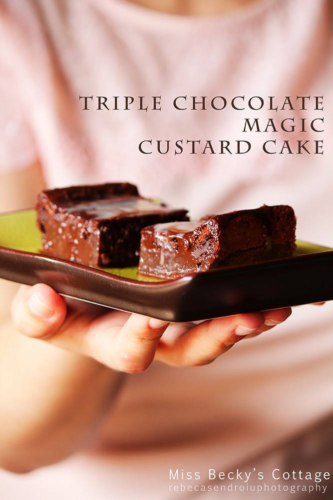 Triple Chocolate Magic Custard Cake rebecasendroiuphotography