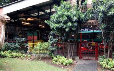Wisata Paling di Sukai di Bogor