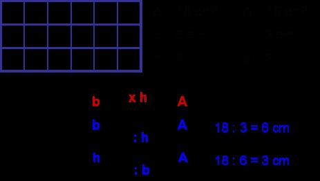Didattica Matematica Scuola Primaria Dallarea Alla Misura Dei Lati