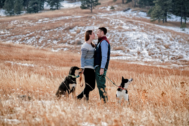 a couple looks to one another an engagement photo in Boulder Colorado with their dogs at their side in a snowy field