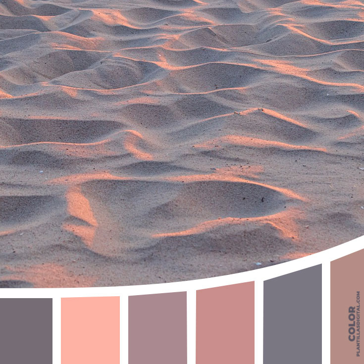 color_512