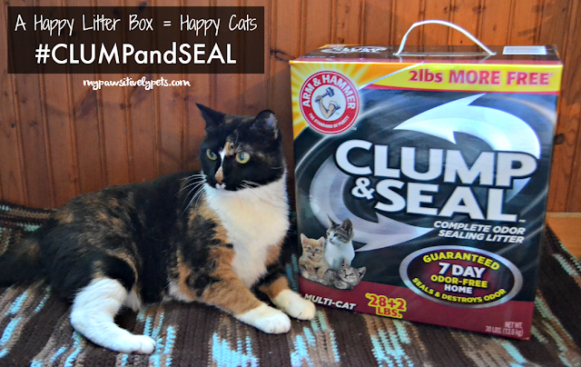 A Happy Litter Box = Happy Cats #CLUMPandSeal
