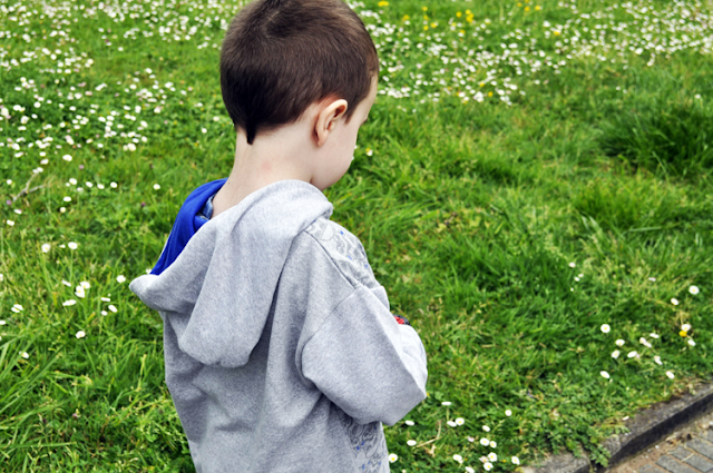 niño (pixelillo) de espaldas con sudadera gris de star wars con capucha azul, en un parque se ve todo el campo verde lleno de margaritas
