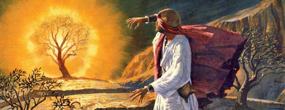 MWG, din, islamiyet, Neden tüm peygamberler Orta doğu'dan, Tüm peygamberler Arap topraklarından, Hep aynı yerden peygamber çıkması, Peygamberler ve orta doğu, yahudilik, Peygamberler,