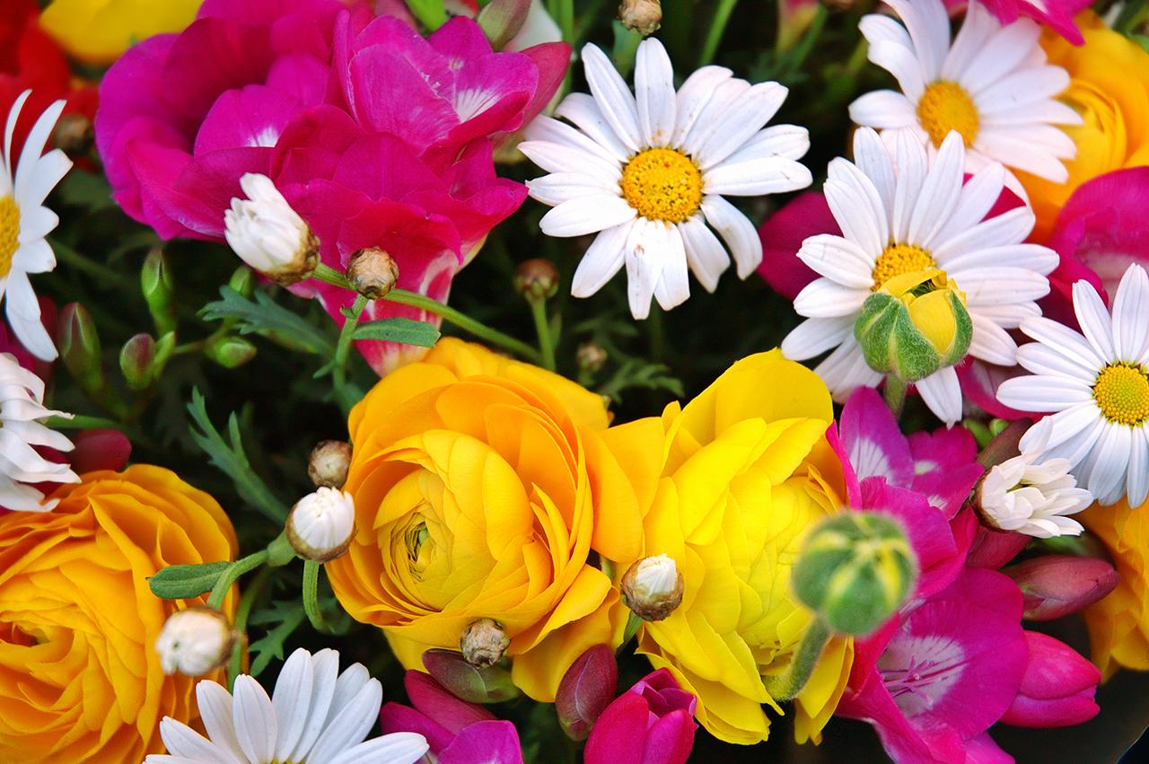 Flower bouquet at La Rambla dels Flors in Barcelona