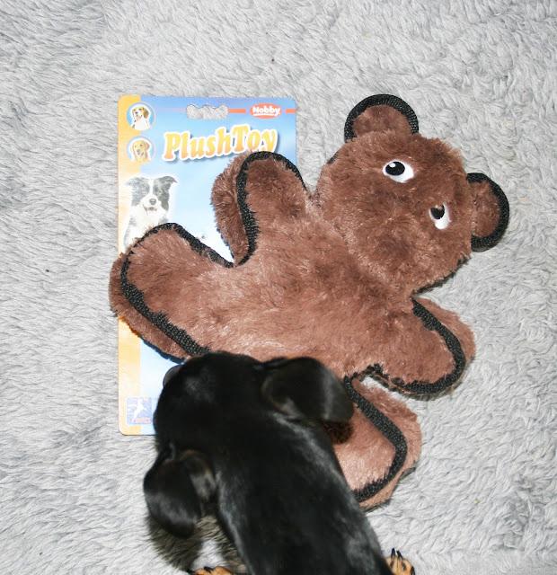 "Plüsch-Spielzeug ""Bear Extra Strong"""