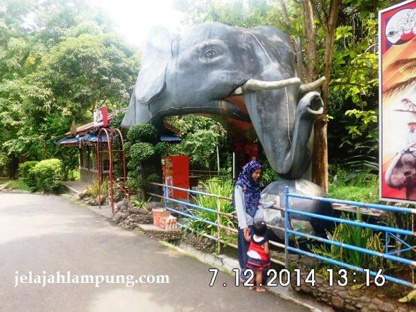 cafe gajah