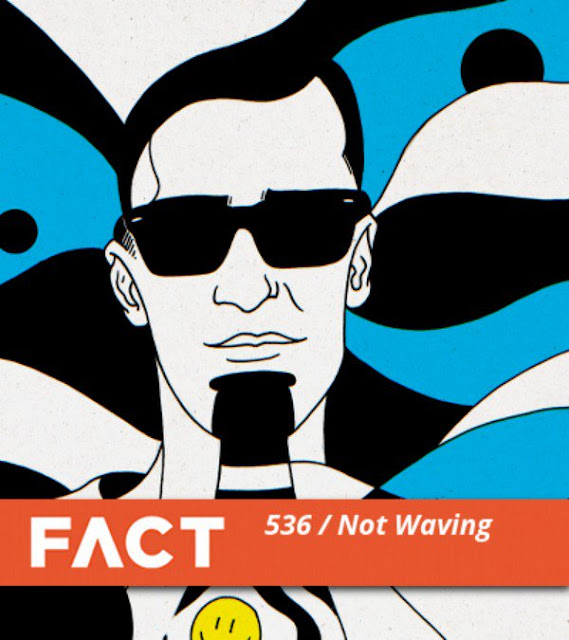 NOT WAVING FACT MIX