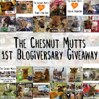 The Chesnut Mutts 1st Blogiversary Giveaway
