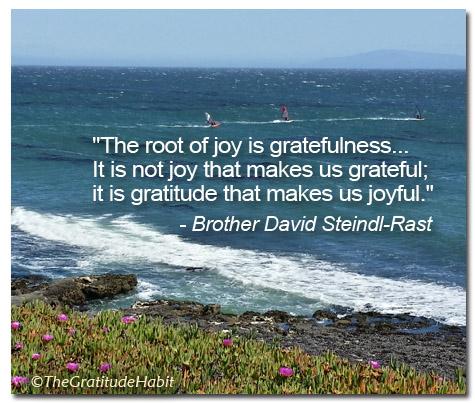 The Gratitude Habit Journal Gratitude Quote Steindl Rast