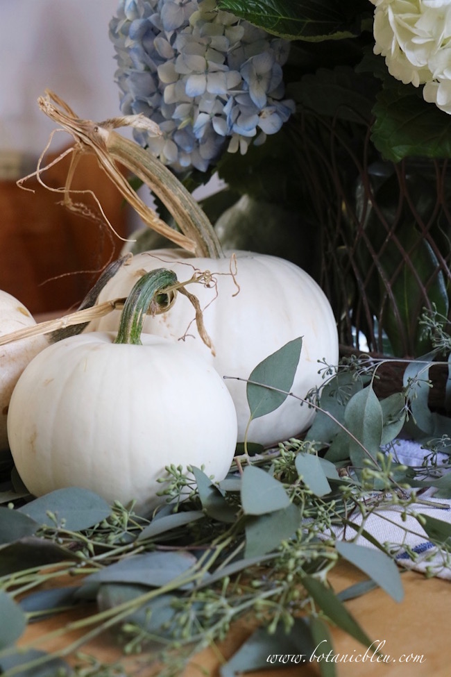fall-display-white-pumpkins-seeded-eucalyptus