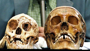 Indonesia's 'hobbits' disappeared earlier than thought: study
