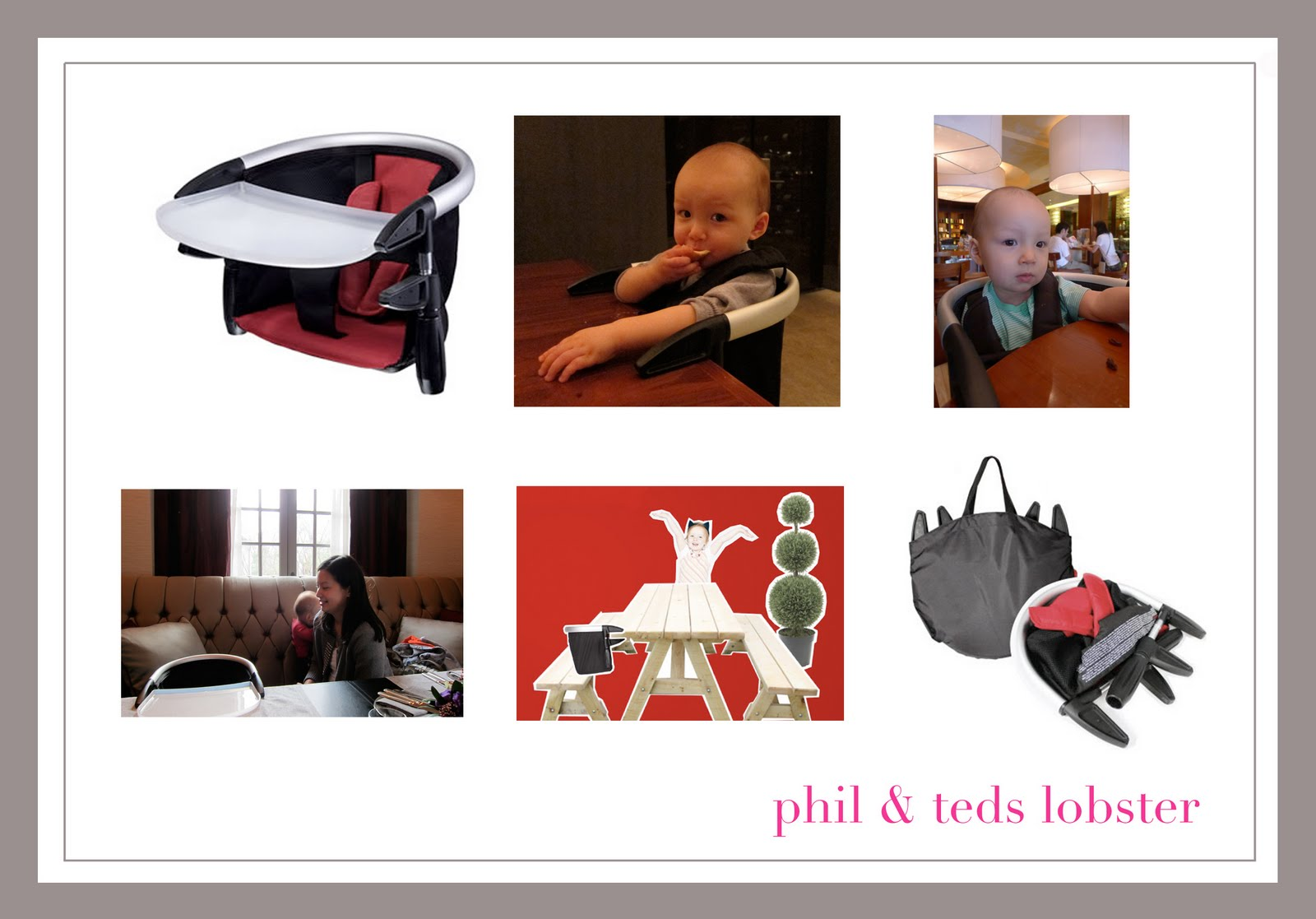 Phil And Ted Lobster Chair Recall V Rocker Lattes Juice Teds Excellent Adventure