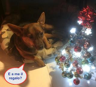 il regalo più bello, più giusto, più umano da fare a natale Il regalo più bello, più giusto, più umano da fare a Natale IMG 4227 2B2