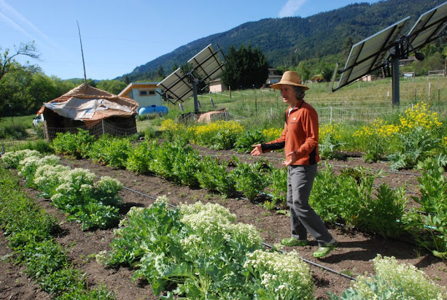 Growing Farm Crops with Science and Scott Jay Abraham