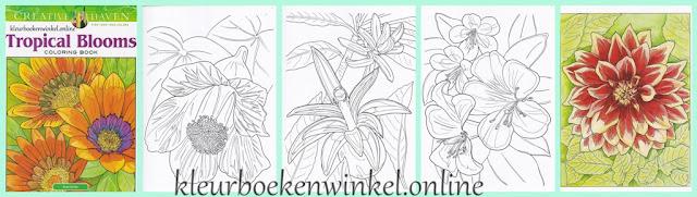 kleurboek tropical blooms komt uit de serie bloemig