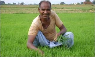 किसान खेती करते हुए खुश है