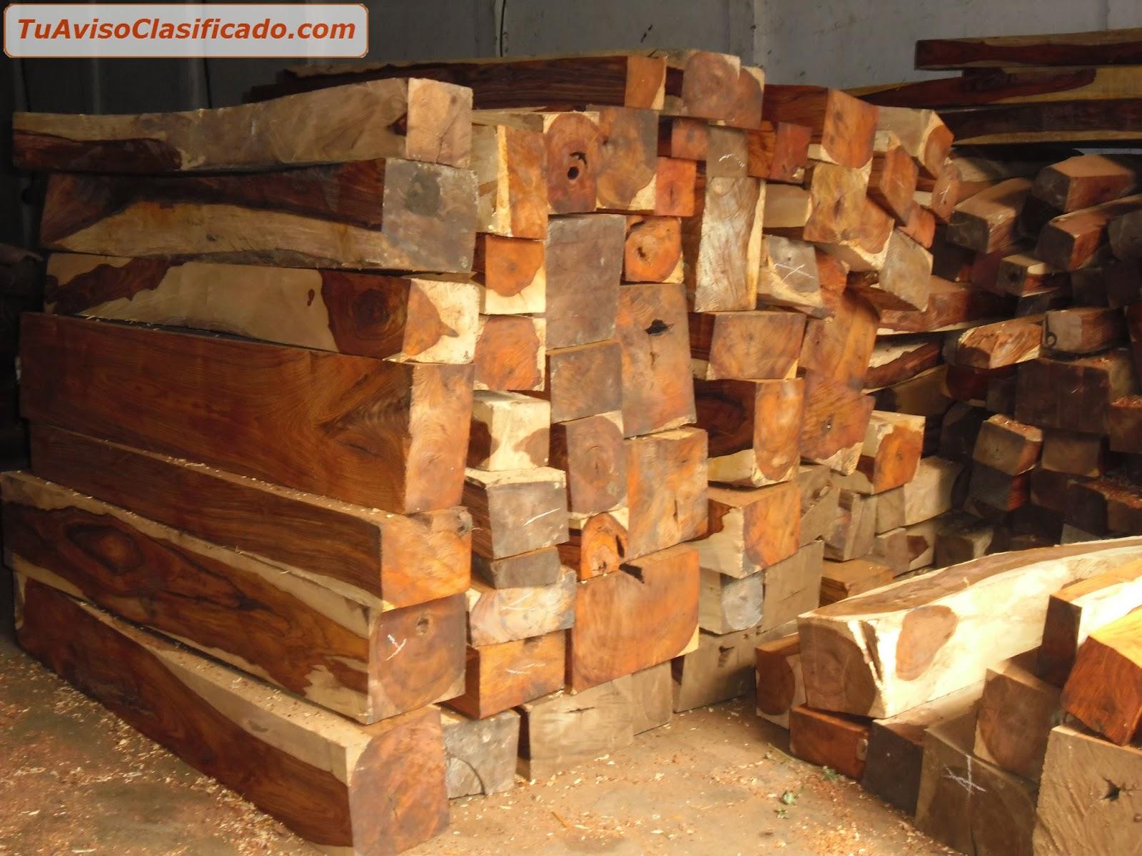 Control de Plagas en Sanidad Ambiental Ms madera