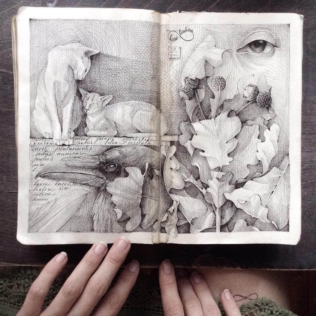 03-Cats-and-Crow-Lena-Limkina-Intricate-Moleskine-Drawings-with-Cats-www-designstack-co