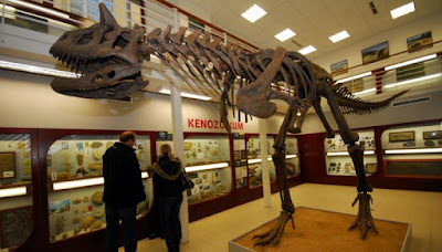 Esqueleto Carnotaurus