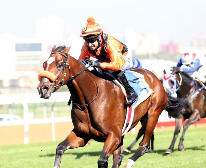 Abashiri - Horse Racing - Vodacom Durban July 2018
