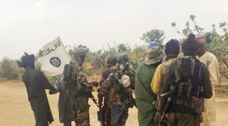 10 WOMEN KIDNAPPED IN BORNO BY TERRORIST