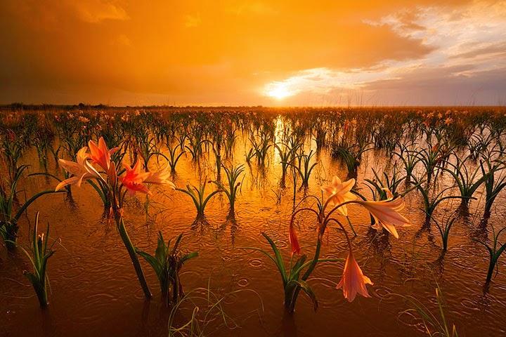 ناميبيا وأجمل المناظر الطبيعية والكثبان الرملية